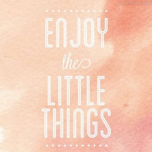 49807-Enjoy-The-Little-Things